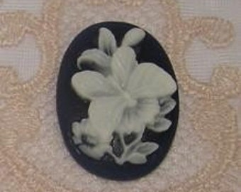 Wholesale lot of 10 18X25mm Cameo C20