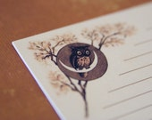 Monsieur Hibou - A5 Letter Set - 10 sheets 5 envies