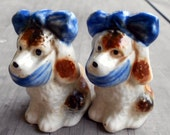 Vintage Toothache dog salt and pepper shakers, 1950s ceramic spaniels with toothache scarf, ah, that feels better