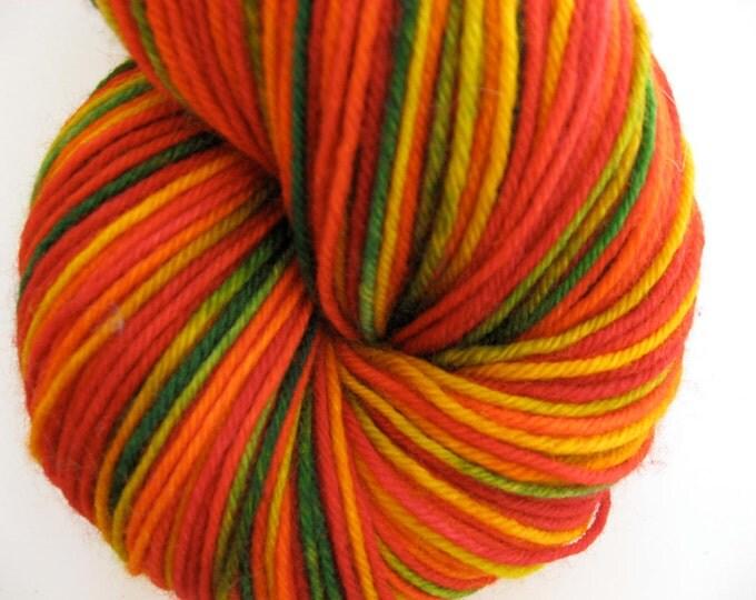 Crazy Fall Sock Yarn