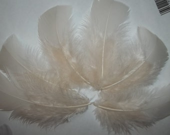 FEATHERS Ivory turkey flat feathers, craft supplies, DIY, bridal wedding hair clips, ivory feathers