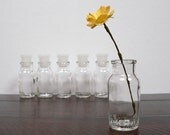Six glass spice jars bottles with lids made in Japan