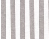 Metallic Silver Stripe