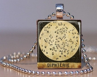 Diptheria - Vintage French Medical Microscope Slide Image made into a Pendant from an Upcycled Scrabble Tile (04F1)