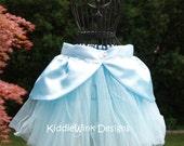 Cinderella inspired tutu costume