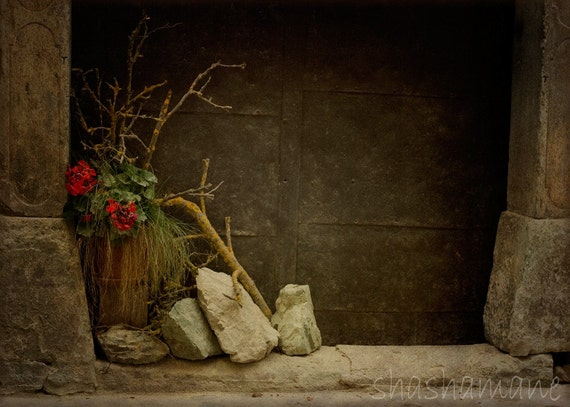 Sensitivity - Slovenia doorway scene 5x7 fine art photography print, flowers in the doorway