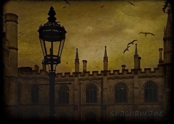 What goes on. Halloween 10x15 Gothic, autumn/fall mood fine art photo print Cambridge