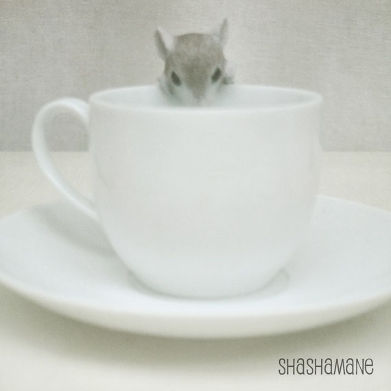 Tea tide is high, mouse and white teacup 8x8 photo print. Mad Hatter's party
