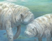 Print open edition 8 by 10 Florida manatee bowman sea cow portrait Plump & Placid mermaid
