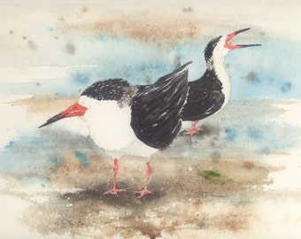 9 by 12 inch original watercolor Bird black skimmers Thinking Of Heading South humor bowman