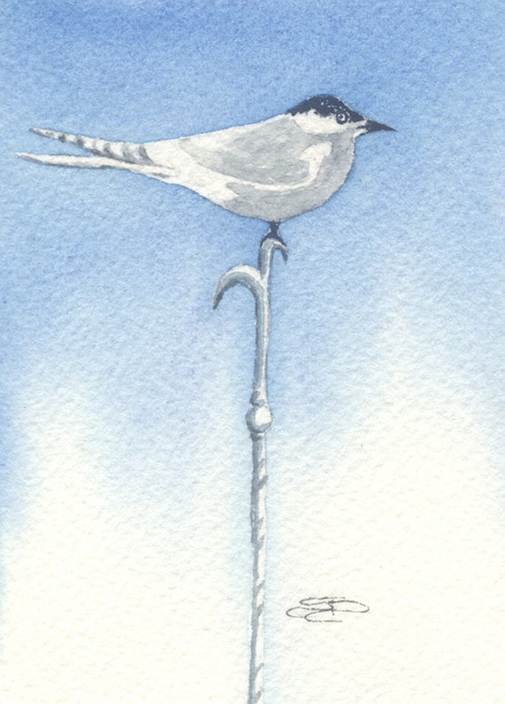 ACEO Original Watercolor Tern Pike bowman a lovely tern perches on a nice pike humor