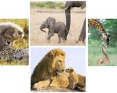 safari nursery art,  BABY...