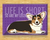 Corgi Magnet - Life is Short So Are My Legs - Tri Color Pembroke Welsh Corgi Dog Magnet