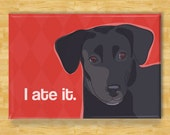 Labrador Retriever Magnet - I Ate It - Black Lab Gifts Fridge Refrigerator Dog Magnets