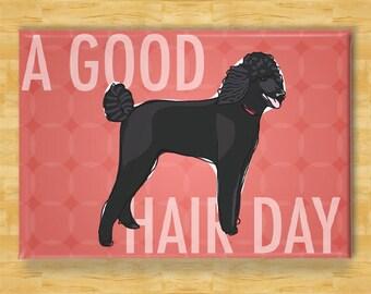 Poodle Magnet - A Good Hair Day - Poodle Gifts Refrigerator Dog Fridge Magnet
