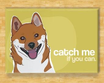 Shiba Inu Fridge Magnet - Catch Me If You Can - Shiba Inu Gift Refrigerator Dog Fridge Magnet