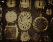 The Rabbit's Collection of Watches - 8 x 10 Photograph - Free Shipping in US -