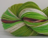 Gnome - Hand Dyed Worsted Weight 100% Superwash Wool Yarn