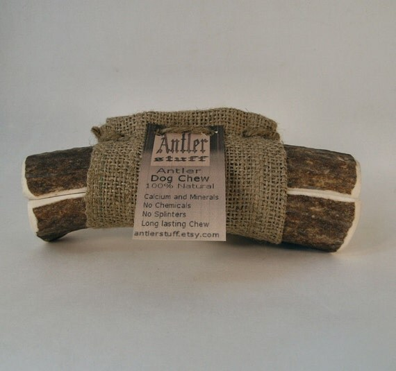 Large Elk Antler Dog Chew