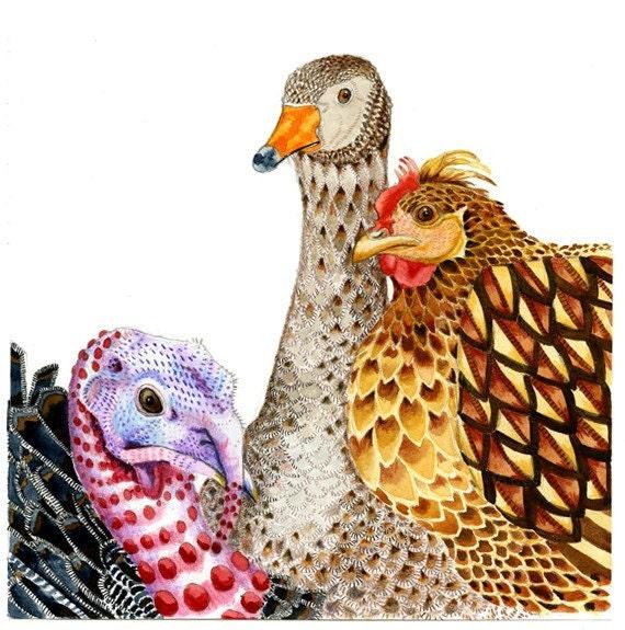 Bird Print Three Birds Duck, Turkey Hen 8x11