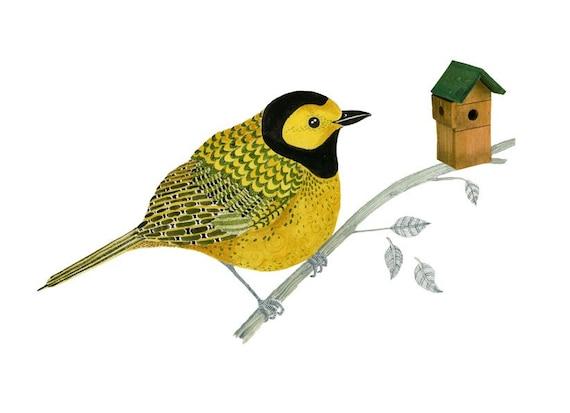 Bird Print Yellow Bird on a Branch Giclee print  illustration 8x11