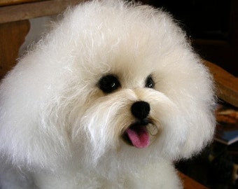 LIFE LIKE custom Sculpture or Memorial of your Bichon Frise