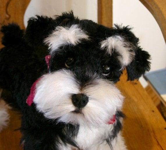 Miniature SCHNAUZER Puppy - Custom Handmade Life Like Soft Sculpture