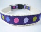 Hemp Dog Collar - Purple Dots - 3/4in