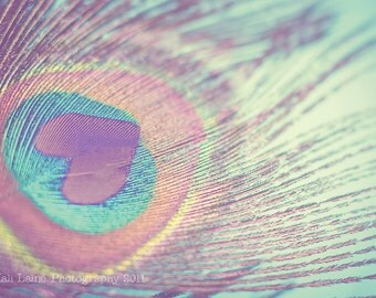 I Heart Peacocks -  Original Fine Art Photography, Love Hearts Peacock, Soft Pastels Abstract Photography Print