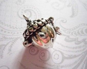 Acorn Nut Prayer Box Locket in Antiqued Silver Three Dimensional Pendant Charm Qty 1