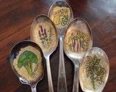 Vintage Spoon Garden Plant Markers Custom Set of 5