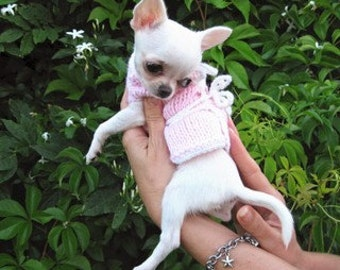 Knitting Pattern For Teacup Dog : Popular items for chihuahua fashion on Etsy