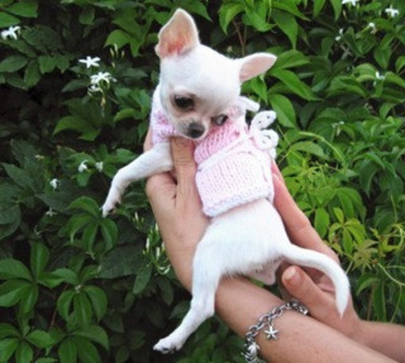 Puppy sweater Chihuahua clothing Pet Fashion Gift for pets Pink Coat Chihuahua Knit Crochet coat for little dogs Puppy Warms Heart