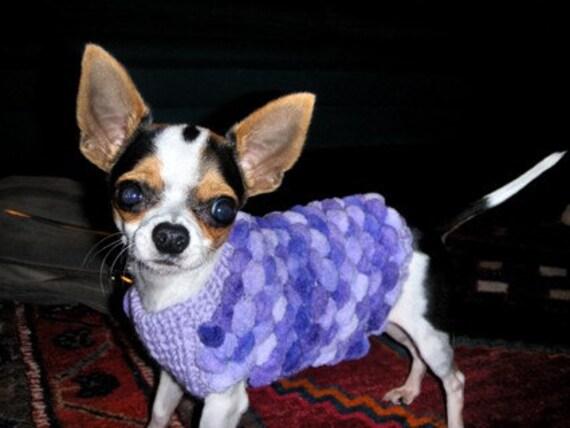 Maglione cane chihuahua regalo animali abbigliamento moda cani for Vestiti usati in regalo