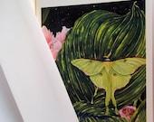 Card, Luna Moth