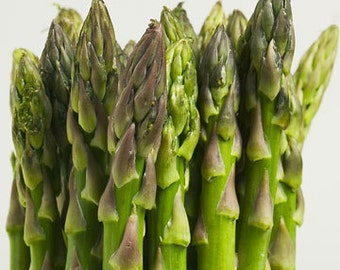 Asparagus Mary Washington 200 Seeds Asparagus officinalis