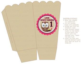 Printable DIY Button Owl First Birthday POPCORN Favor Boxes