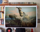 Antelopes Print 30x40