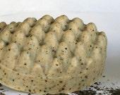 Seaweed  Big Massage Cold Process Soap bar-based on Greek Olive Oil, Unscented