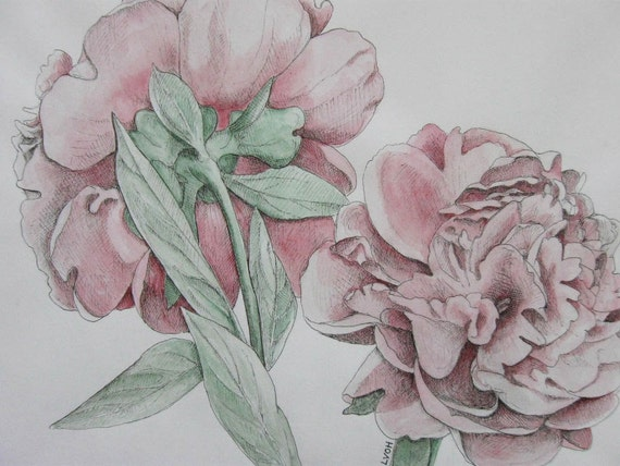 peonies original watercolor painting