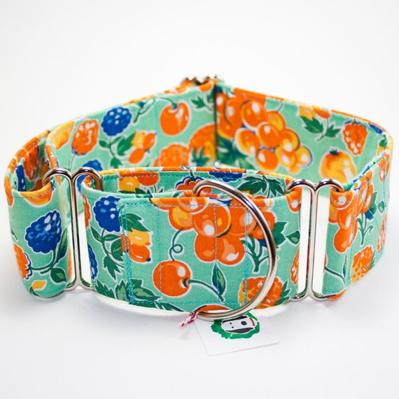 Extra Wide Upcycled Fruity Martingale Dog Collar - M/L