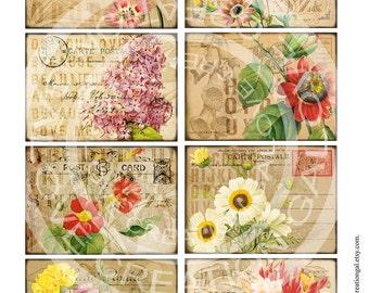 Vintage Flower Rose Botanical ledge French Postcards Stamps ACEO ATC Background Gift Tags Labels Card Digital Collage Sheet Images Sh233