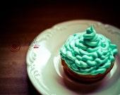 Custom listing 5 x 7 print for Mindy Swirly Blue Cupcake print