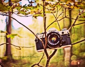Vintage Camera - The Fall Snap - Autumn love - Canon AE-1 - 5 x 7 print - gift for photographer