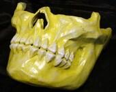 Skull Menpo Half Face Skeleton Mask