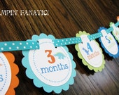 READY to SHIP Dashing Dino Collection: Just Born/0-12 Mos Dinosaur First Birthday Photo Picture Banner w/clips