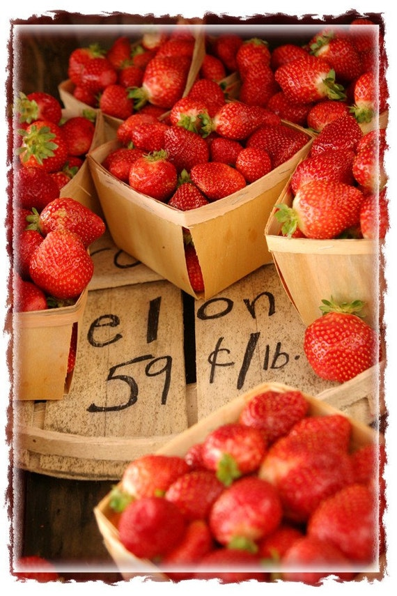 photograph Strawberries for .59 cents lb. Fine Art gifts for woman men man