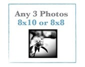 SALE Any Three Photos 8x10 or 8x8