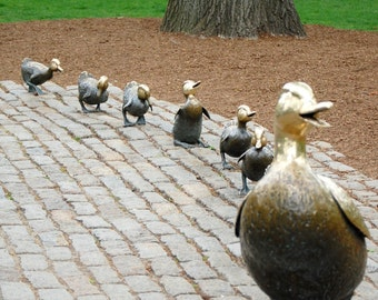 Make Way for Ducklings 5 x 7 Photograph Boston Photos, Boston Landmarks, Nursery Decor, Childs Room Wall Art, Office Wall Decor, Playroom