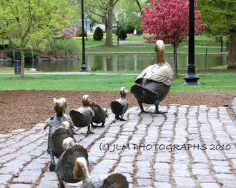 Childrens Wall Art, Boston Photography, Make Way for Ducklings, 16x20 Photograph, Large Art, Nursery Art, Office Decor, Bedroom Pictures
